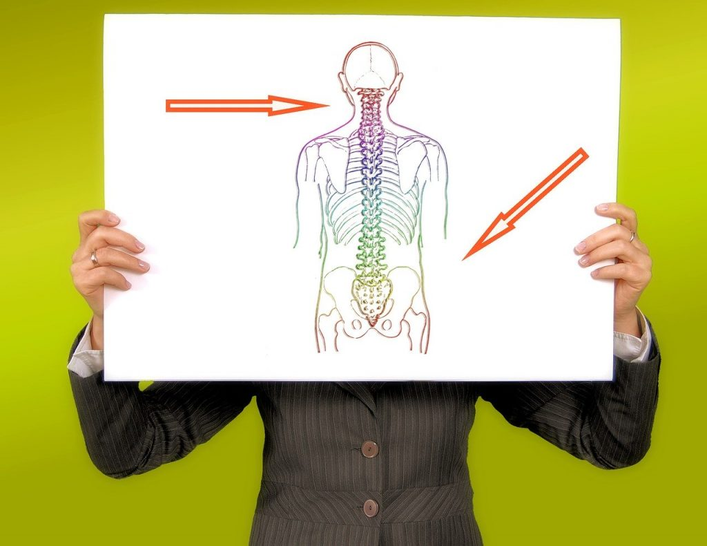 On The Go Wellness Chiropractor Miami Best Back Brace for Posture