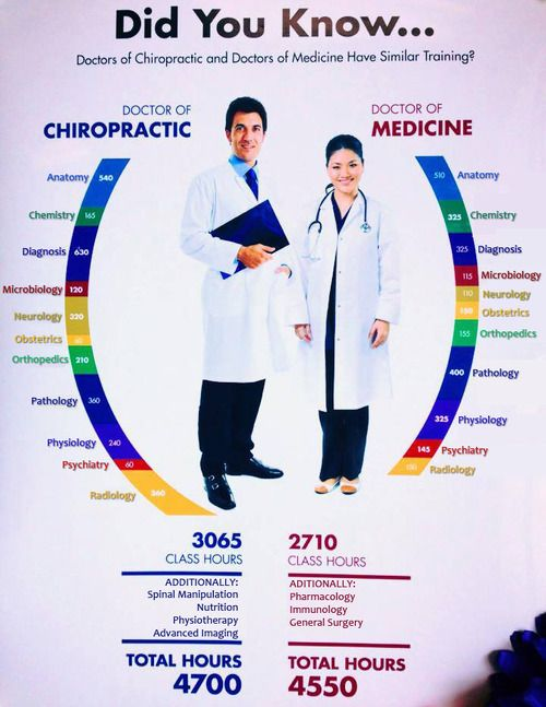 On The Go Wellness Chiropractor Miami 10 Things You Didnt Know About Chiropractic