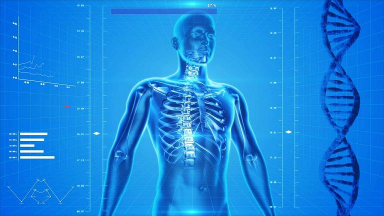 On The Go Wellness Chiropractor Miami: Tips To Keep Your Bones Healthy